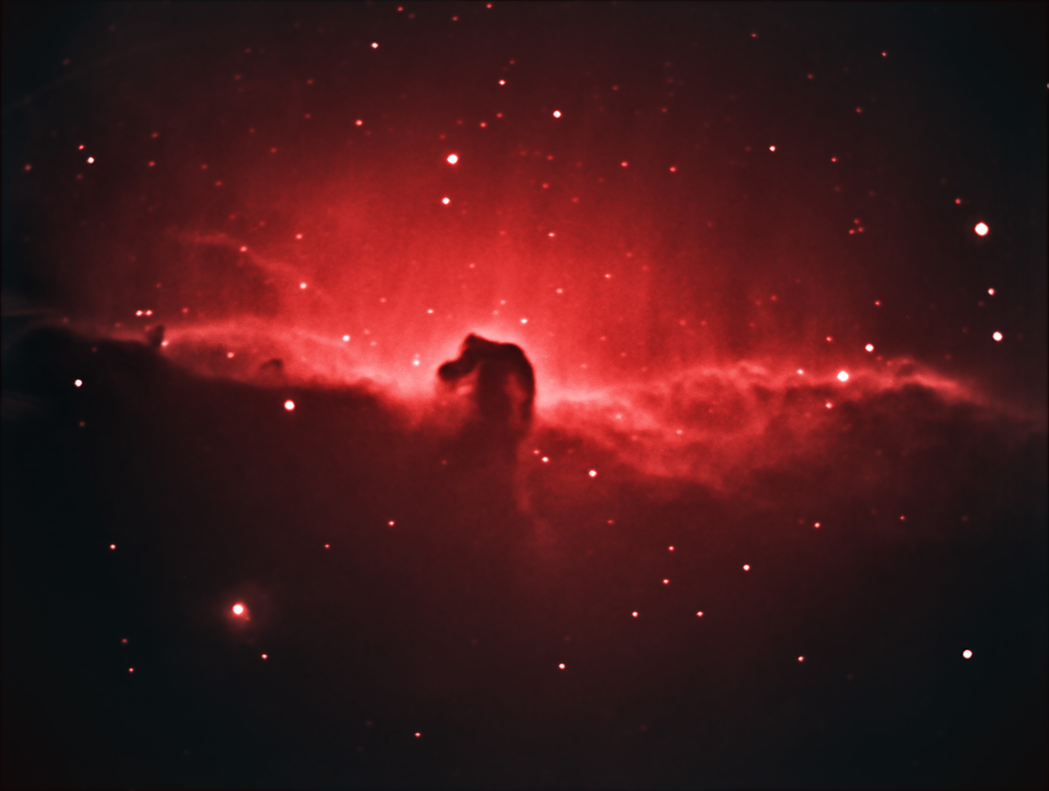 horsehead nebula pictures - HD1920×1448