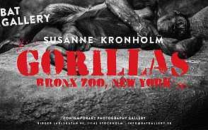 Fotograf Susanne Kronholm, på BAT Gallery.